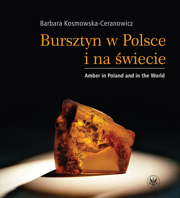 Bursztyn w Polsce i na świecie. Amber in Poland and in the World, wyd. 1 - PDF